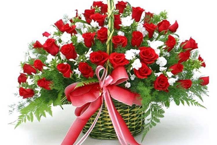 Hình ảnh những bó hoa đẹp tặng thầy cô 20-11